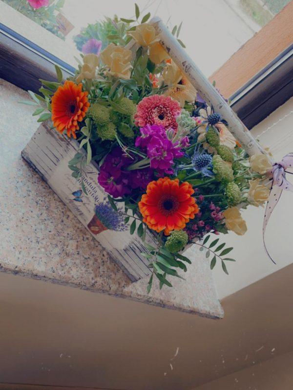 Cutie flori Gardenia